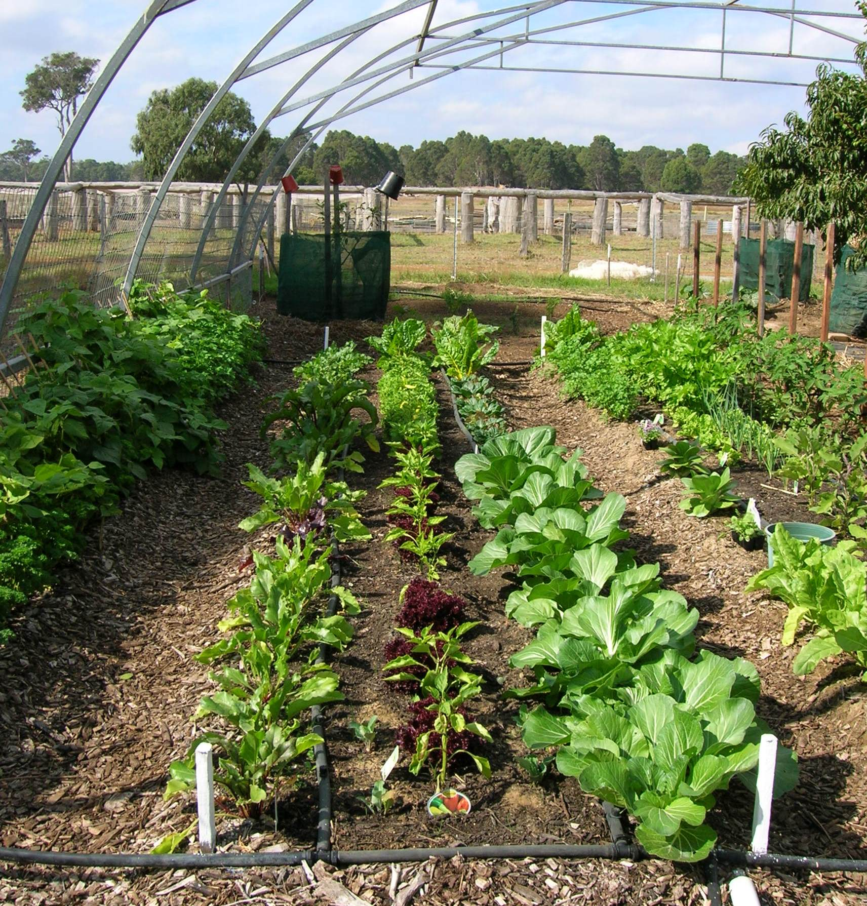 Blog pic shire of augusta margaret river libraries for Permaculture exemple