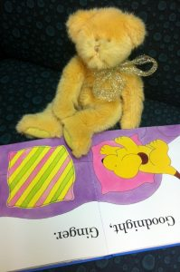 School holiday activity - Teddy Bears picnic and library sleepover for teddies @ Margaret River Library